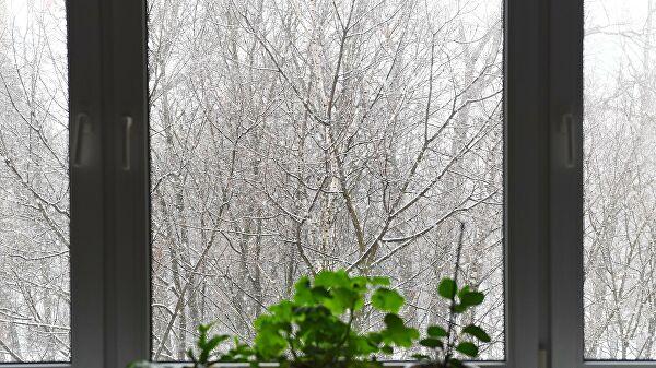 Синоптики пообещали в Центральной России снегопад накануне Нового года