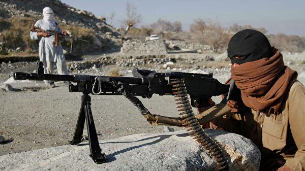 Переговоры России с талибами пока не планируются