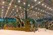 Рядом с «Островом Мечты» появится новая станция метро
