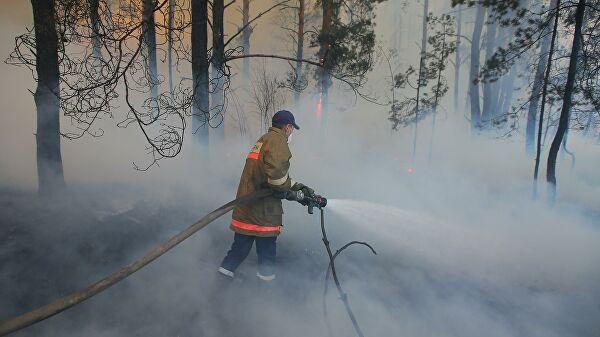 В Черниговской области загорелись торфяники
