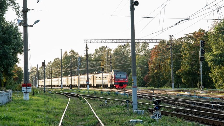 Между Петербургом и Ленобластью запустили дополнительные электрички