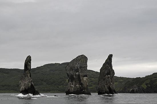 Учёные РАН исключили версию химического загрязнения акватории Камчатки