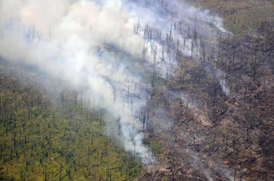 В МЧС поддержали законопроект о субсидировании пожарных-добровольцев