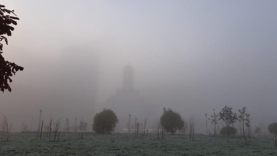 Густой туман накрыл несколько районов Петербурга