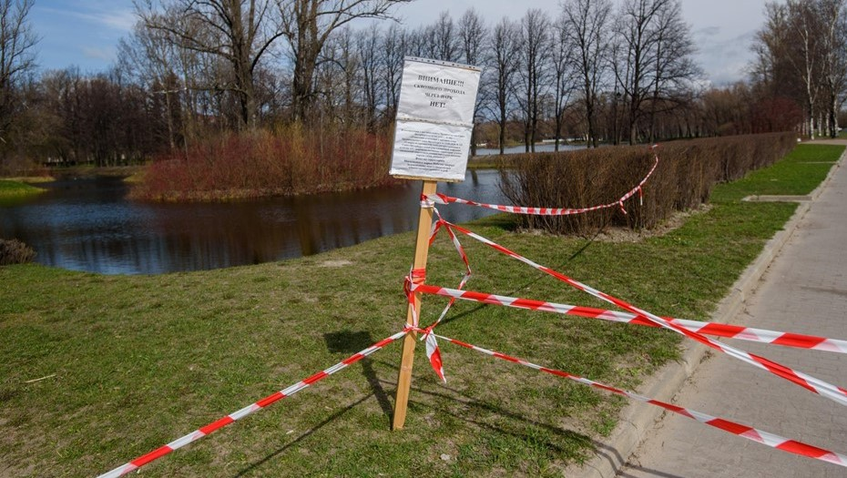 Из-за сильного ветра в центре Петербурга закрыли сады и скверы