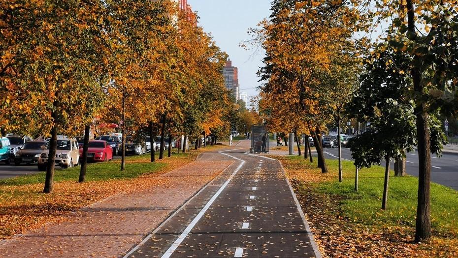 На Бухарестской улице появилась трехкилометровая велодорожка