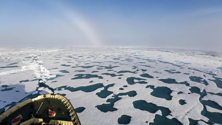 Первый арктический маршрут для туристов откроют уже весной