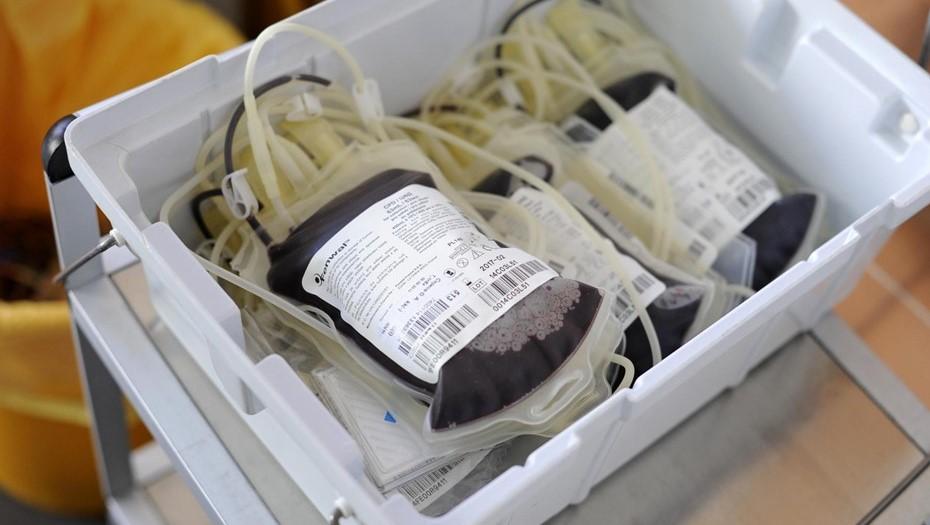 Петербург накопил необходимый запас плазмы для тяжёлых пациентов с COVID-19