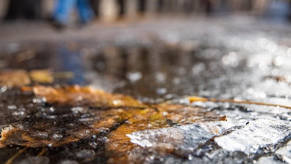 Петербургу предсказали штормовой ветер и ледяные дожди