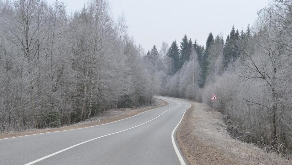 В Ленобласти объявили штормовое предупреждение из-за тумана