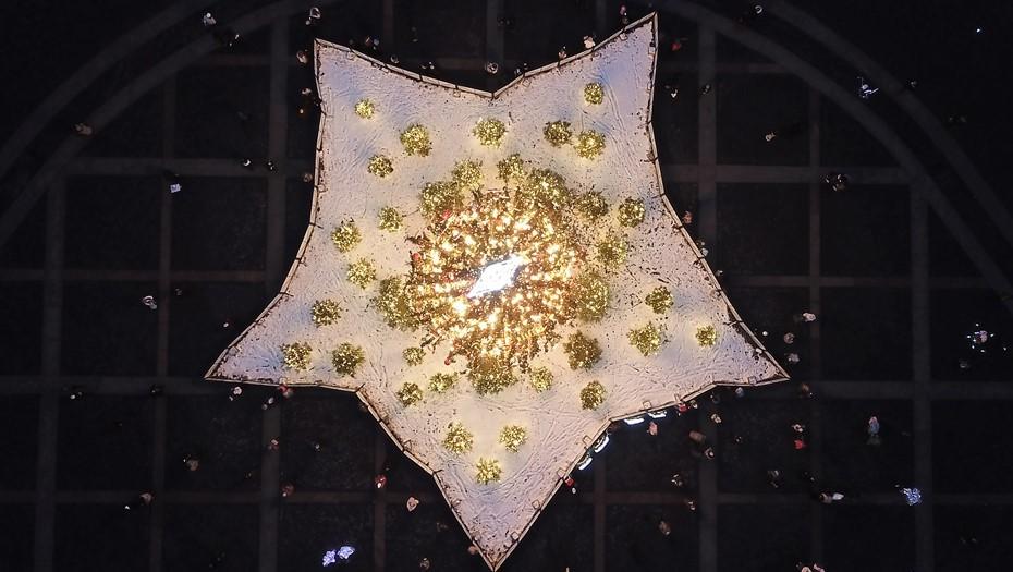 Главную новогоднюю ёлку Петербурга посетил диплодок