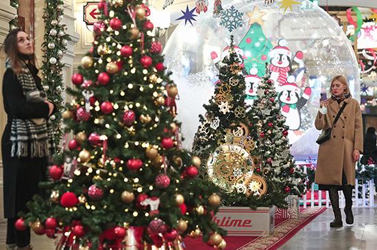 Новые требования к установке новогодней ёлки вступят в силу с 1 января