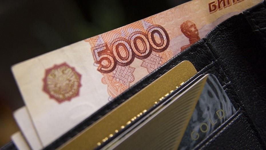 Петербуржцы начали получать президентские выплаты на детей