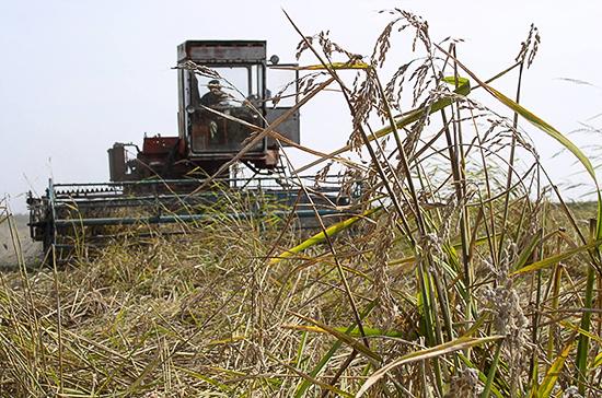 В России может появиться двухуровневое страхование аграриев от ЧС
