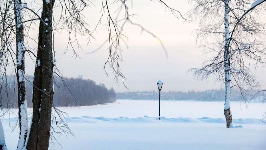 Ленобласть ждёт метель при похолодании до –24 градусов