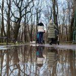 Петербург в воскресенье ждёт почти рекордное потепление