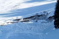 После схода лавины в Домбае спаслись 6 человек