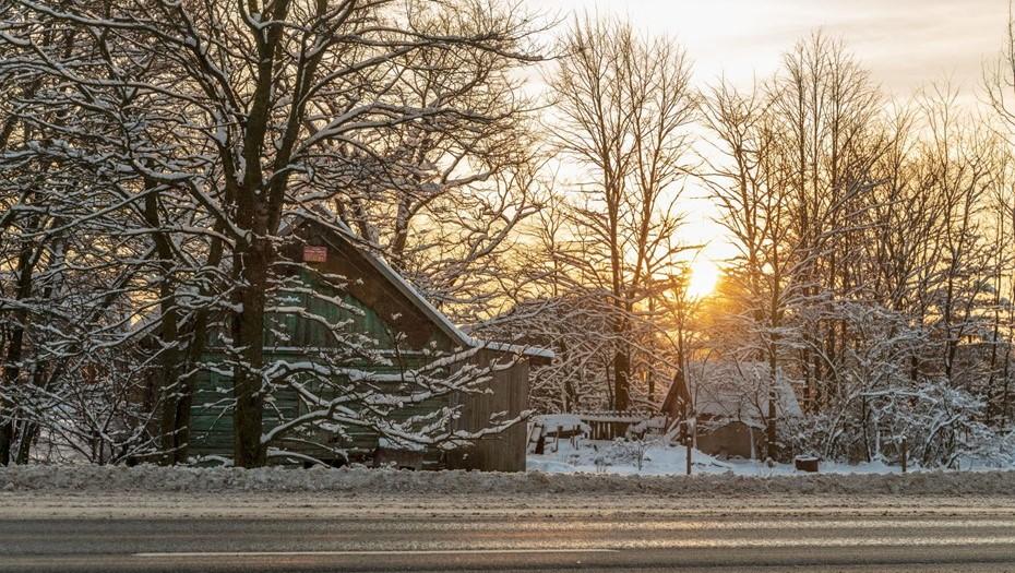 Спасатели предупредили о морозах в Ленобласти до минус 28 градусов