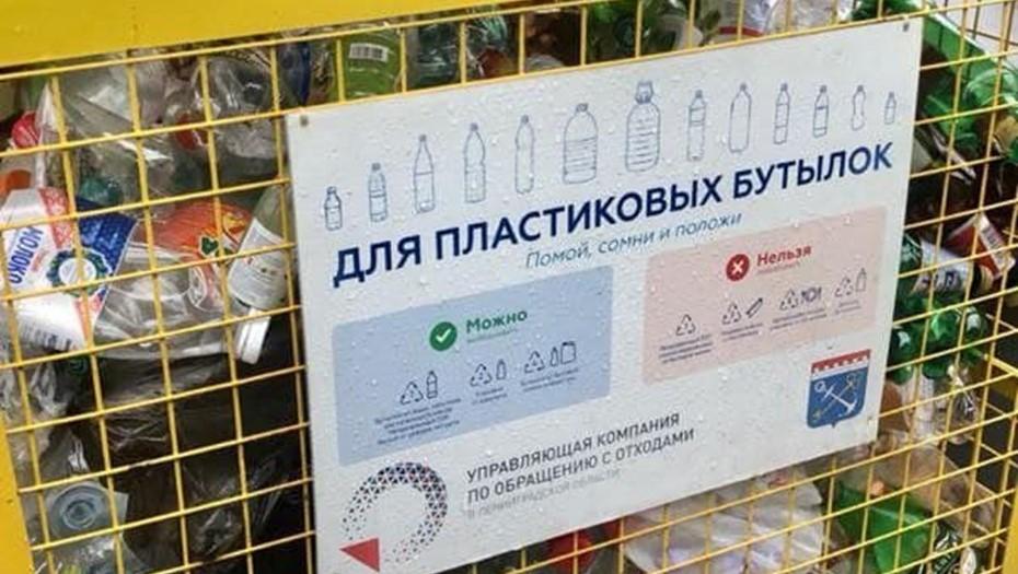 Ленобласть расширила программу по раздельному сбору мусора