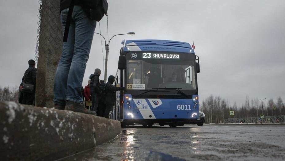 На месте незаконной свалки в Петербурге построят электробусный парк
