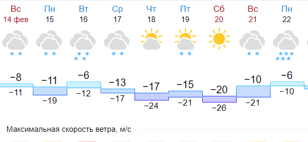 Петербург 14 февраля ждёт небольшой снег при 9 градусах мороза