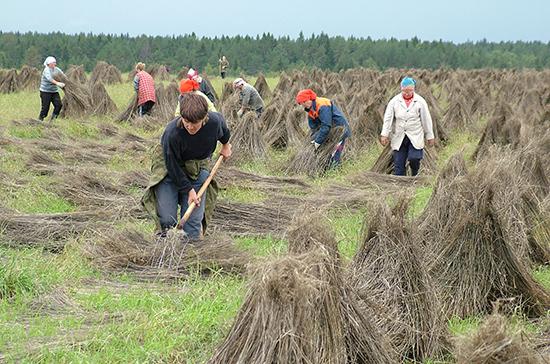 Производители льна получат финансовую поддержку государства
