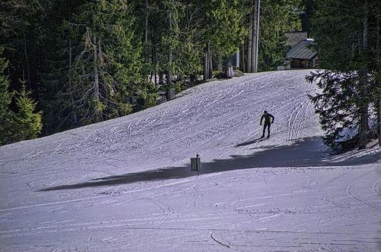 Российские лыжники взяли бронзу командного спринта на ЧМ