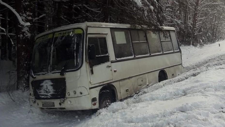 В Ленобласти столкнулись два автобуса, пострадали пять пассажиров