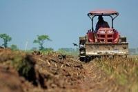 Минсельхоз подготовил проект для соглашений о снижении цен на удобрения