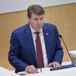 Сенатор оценил призыв Киева к санкциям против «Северного потока — 2»