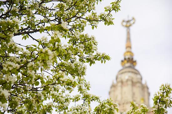 Синоптик рассказал о приходе весны в Московский регион