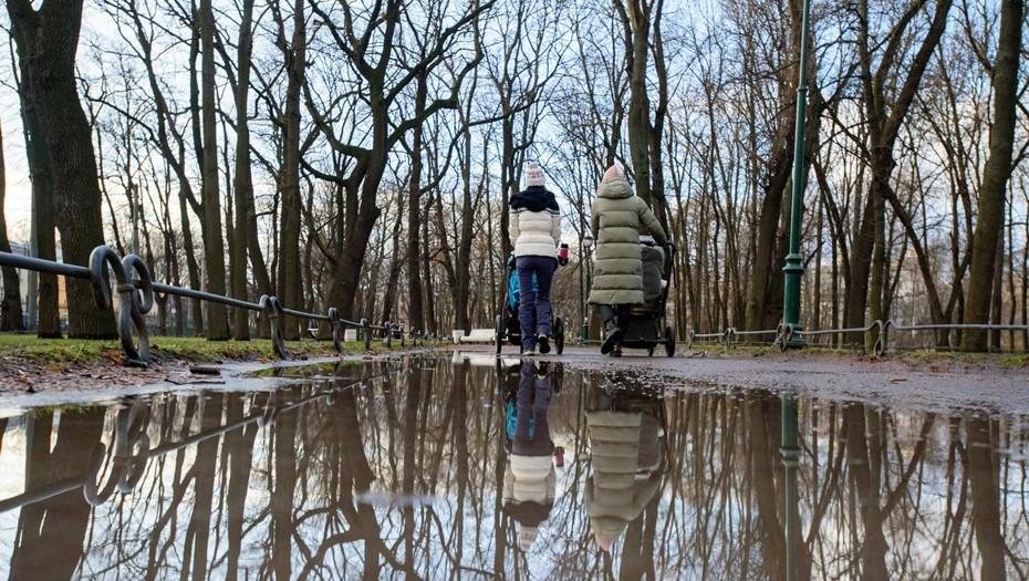 Синоптики обещают петербуржцам усиленный прогрев в выходные