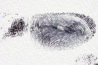 Трудовых мигрантов из ЕАЭС хотят обязать сдавать биометрию