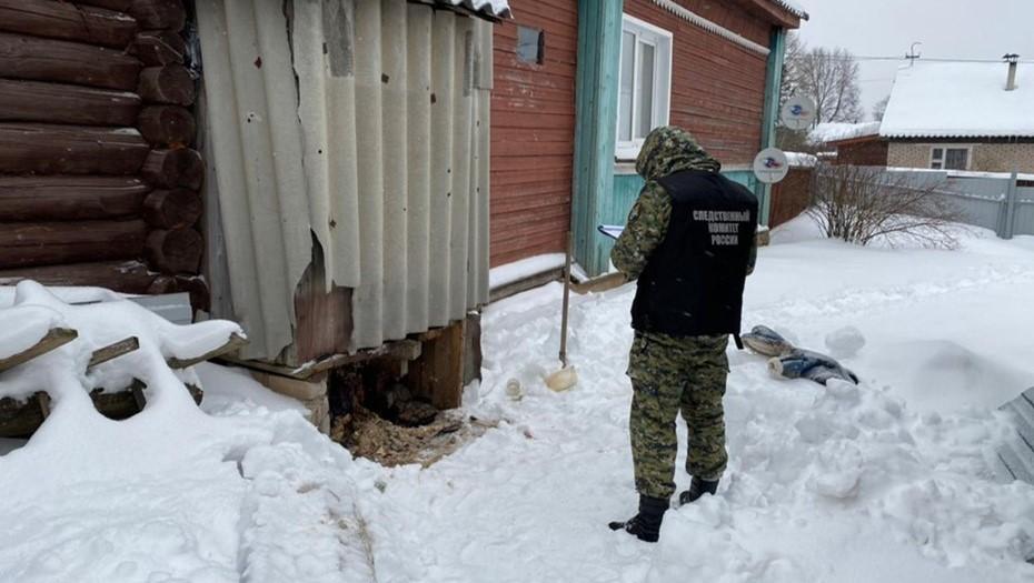 В Новгородской области возбудили дело по факту смерти младенца в выгребной яме
