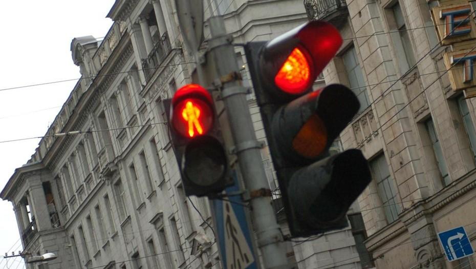 В Петербурге светофор убил током собаку
