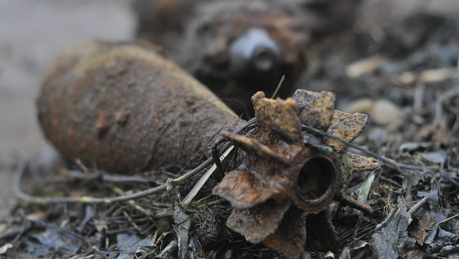 Дома у пенсионера из Ленобласти нашли мины времён ВОВ