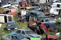 Страховку для владельцев тракторов хотят сделать обязательной