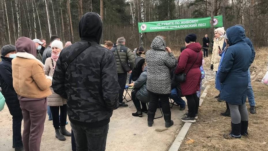 В Приморском районе жители устроили сбор подписей против вырубки леса