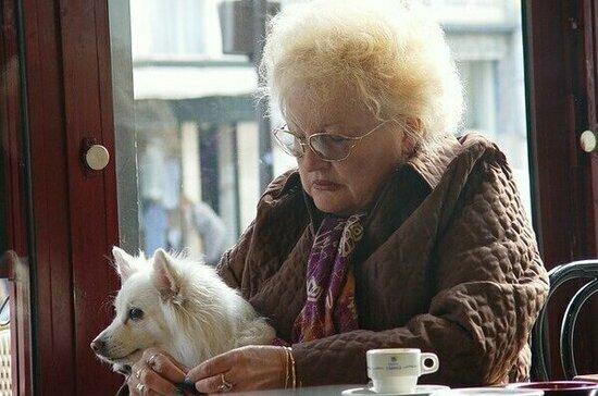 В Союзе потребителей поддержали введение единых правил посещения кафе с животными