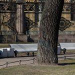 Во вторник после просушки откроют 13 парков и скверов Петербурга