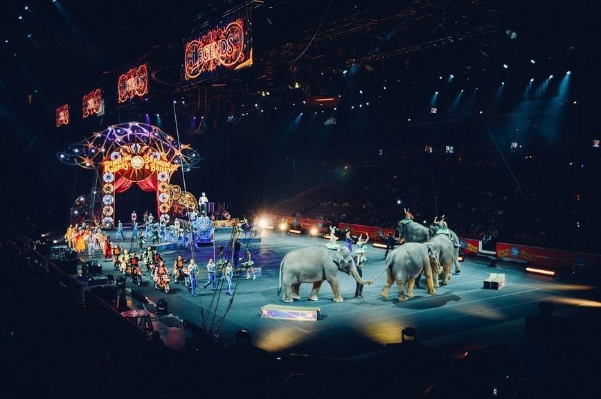 Эдгард Запашный отметил преданность цирку Михаила Багдасарова