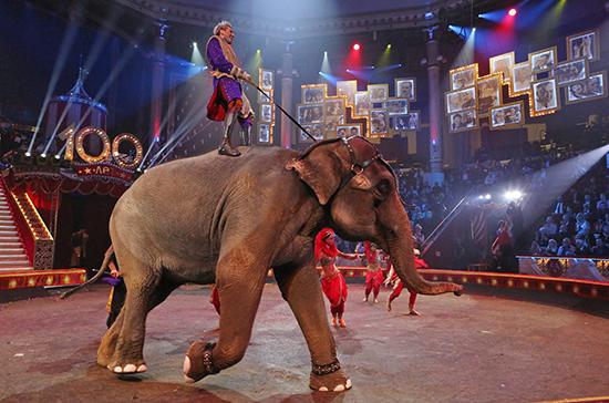 Кабмин утвердил правила предоставления грантов на развитие циркового искусства