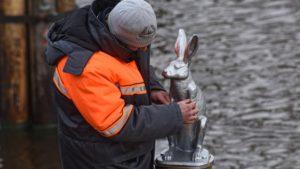 Памятник зайцу вернулся на ледорез у Петропавловки