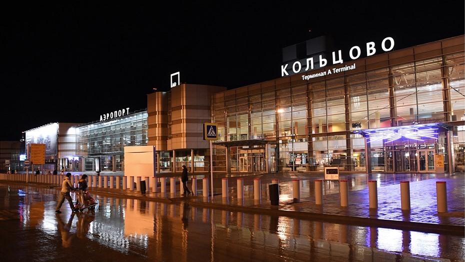 Рейс Екатеринбург — Петербург вернулся в аэропорт из-за столкновения с птицей