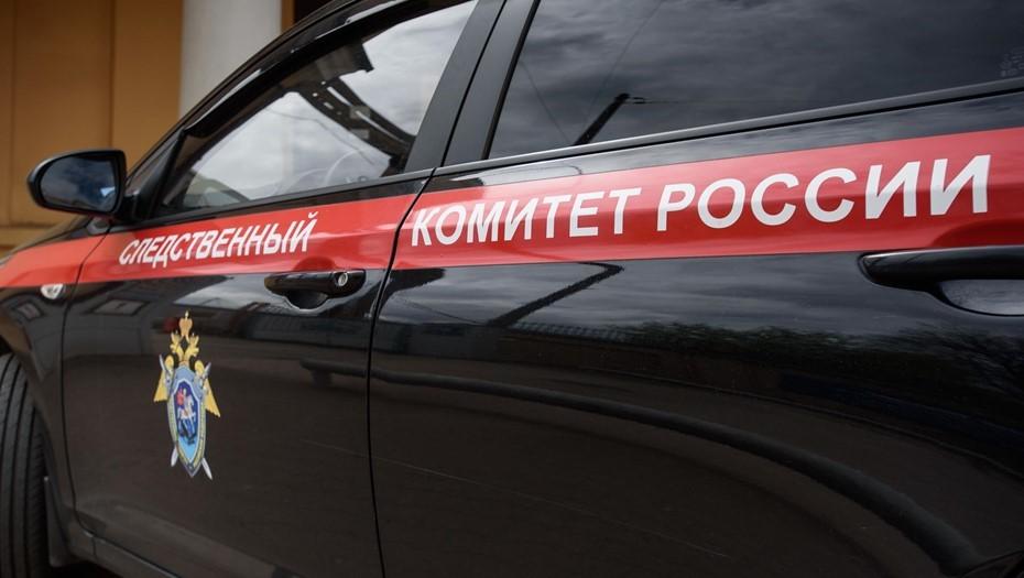 В Калининграде возбудили уголовное дело об истязании 2-летнего ребёнка