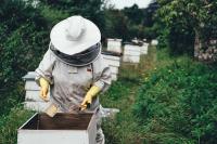 Зюганов презентовал книгу «Энциклопедия юного пчеловода»