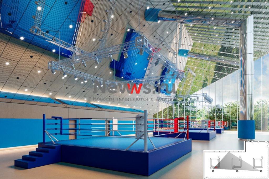 Город построит на территории «Лужников» международный центр самбо и бокса