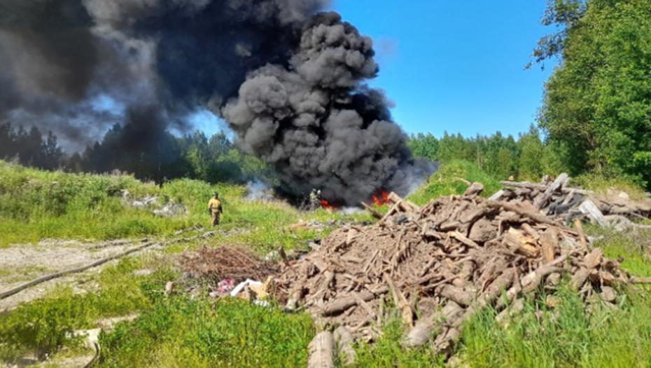 Что-то сильно горит: клубы чёрного дыма напугали жителей на севере Петербурга