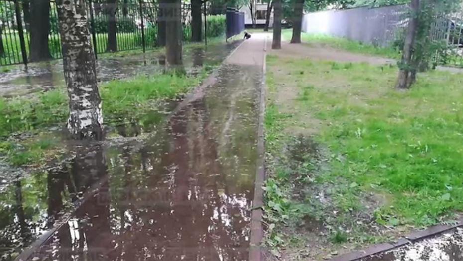 Петербуржцы сообщили о потопе на Замшиной улице
