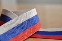 Победителям общероссийских конкурсов из-за рубежа упростят получение вида на жительство